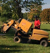 Grinding a stump with a small stump grinder