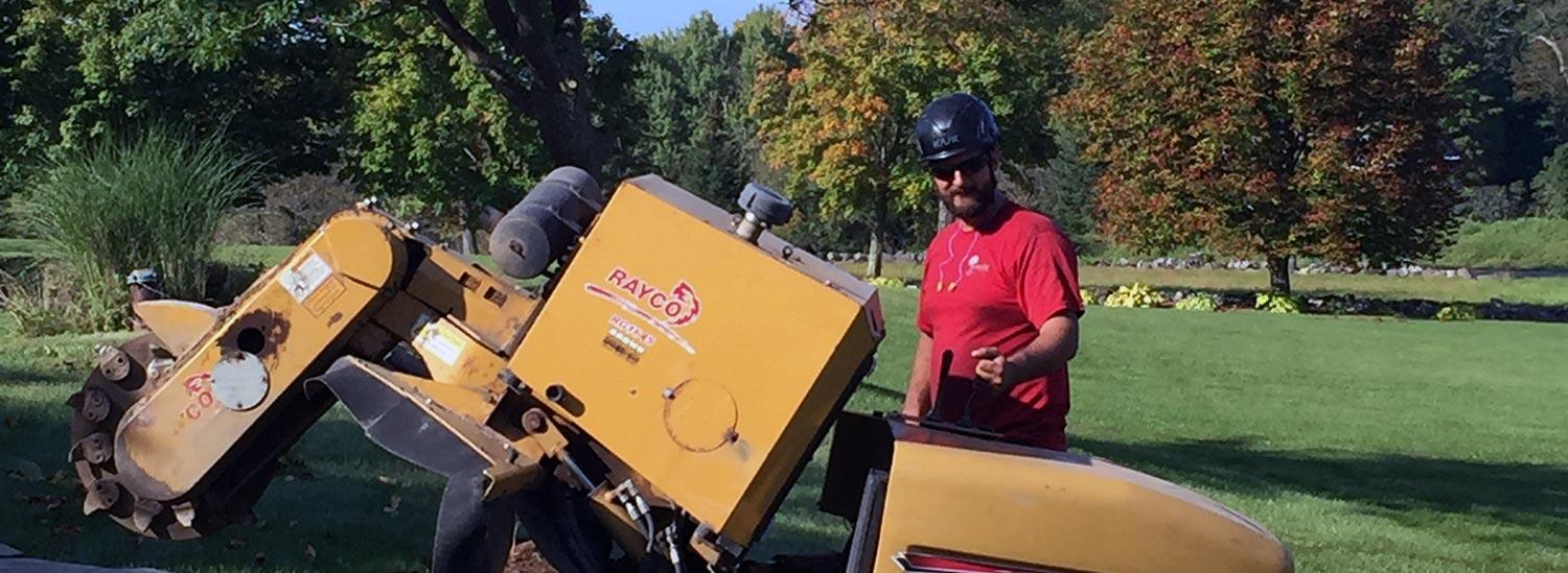 Stump Grinding Services in Vermont